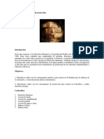 modulo_9_mecanismos_de_proteccion.pdf