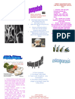 253013668-Leaflet-Osteoporosis.doc