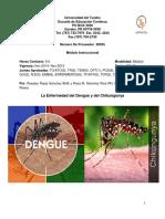 modulo-dengue-chikungunya