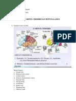 cortex cerebry dan hypotalamus.docx