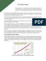 Informe Ciclo Del Carbono