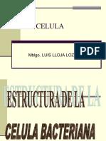 La Celula - Llojaaaaaaaaaaa