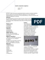 Laboratorio Combustión Compuestos Orgánico1 (Autoguardado) (1)