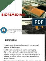 41116_10 BIOREMEDIASI 2017.pdf