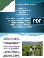 Rufino Humedales pantanos de centla