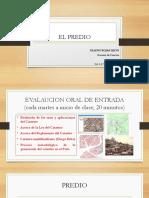 EL PREDIO.pptx