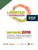 Informe Libertad de Expresion