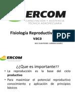 10.2 Anatomia y Fisiologia Reproductiva de La Hembra Bovina