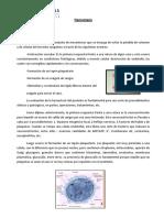 Hemostasis 2012 Transcripcion