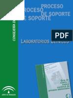 Proceso_de_Soporte_de_Laboratorios_Clinicos.pdf