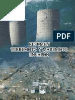 RESUMEN-TERREMOTO-11-DE-MARZO.docx