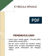 53136580 Tumor Medula Spinalis