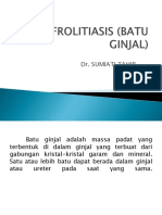 NEFROLITIASIS (BATU GINJAL) PROLANIS.pptx