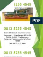 Distributor 0813 8255 4545, Obat Maag Gamaxs Gold Darusyifa Termurah