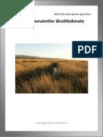 Ghidul buruienilor dicotiledonate.pdf