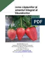 producerea capsunilor.pdf