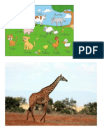 IMAGENES DE ANIMALES.docx