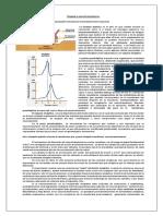 Sinapsis y neurotransmisores.docx