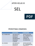 PENAJAMAN  XI.pptx
