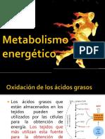 04 metabolismo energetico.pptx
