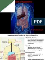 Sistema Digestório 1 - Cavidade Bucal e Esôfago