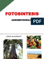 Fotosintesis_2018