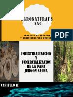 Agronatural'Sproyecto de Administracion