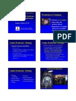 DeBoer_Douglas_Pyoderma_VIFK_2008.pdf