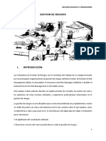 gestion-de-riesgos-final.docx
