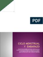 ciclo menstrual y embarazo, 7mo.ppt
