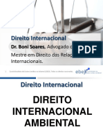 Slides Prof Boni Soares Direito Internacional Ambiental Alunopdf