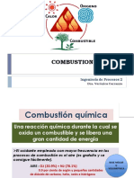 Combustion Quimica