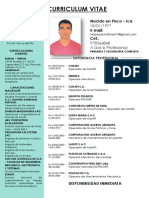 Curriculum Felipe Arturo