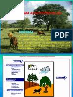 AGROFORESTERIA - 2018