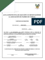 Acta Constitutiva Correcto