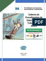 Segurança para Trabalhos de Manutenção Realizados em Altura.pdf