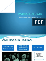 entamoeba histolytica11111112.pptx