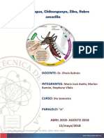 Dengue Zika Chikungunya Fiebre Amarilla