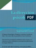 Direccion Psicologica.