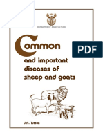 Common Diseases in Goats and Sheep