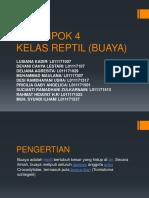 KELOMPOK 4 BUAYA.pptx