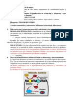 VALOTARIO FISIOPATOLOGIA.docx