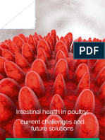 Delacon_Dossier_7-EN_Intestinal-health-in-poultry.pdf