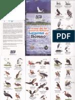 Aves Reserva Laguna Sonso (Valle)