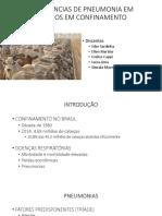 PNEUMONIAS EM CONFINAMENTOS- Apresentação.pptx