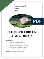 Trabajo Fotosintesis Acuática