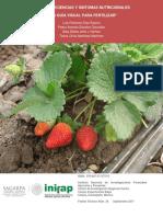 4688 Fresa, deficiencias y síntomas nutricionales.pdf