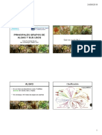 Usos y Producción de Macroalgas Marinas (1)