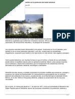 Gobierno Bolivariano Comprometido Con La Proteccion Del Medio Ambiente