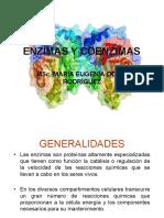 Enzimas III